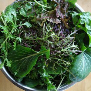 Salatid ja lehtköögivili